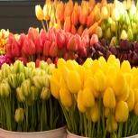 Букеты цветов с доставкой по городу, Якутск